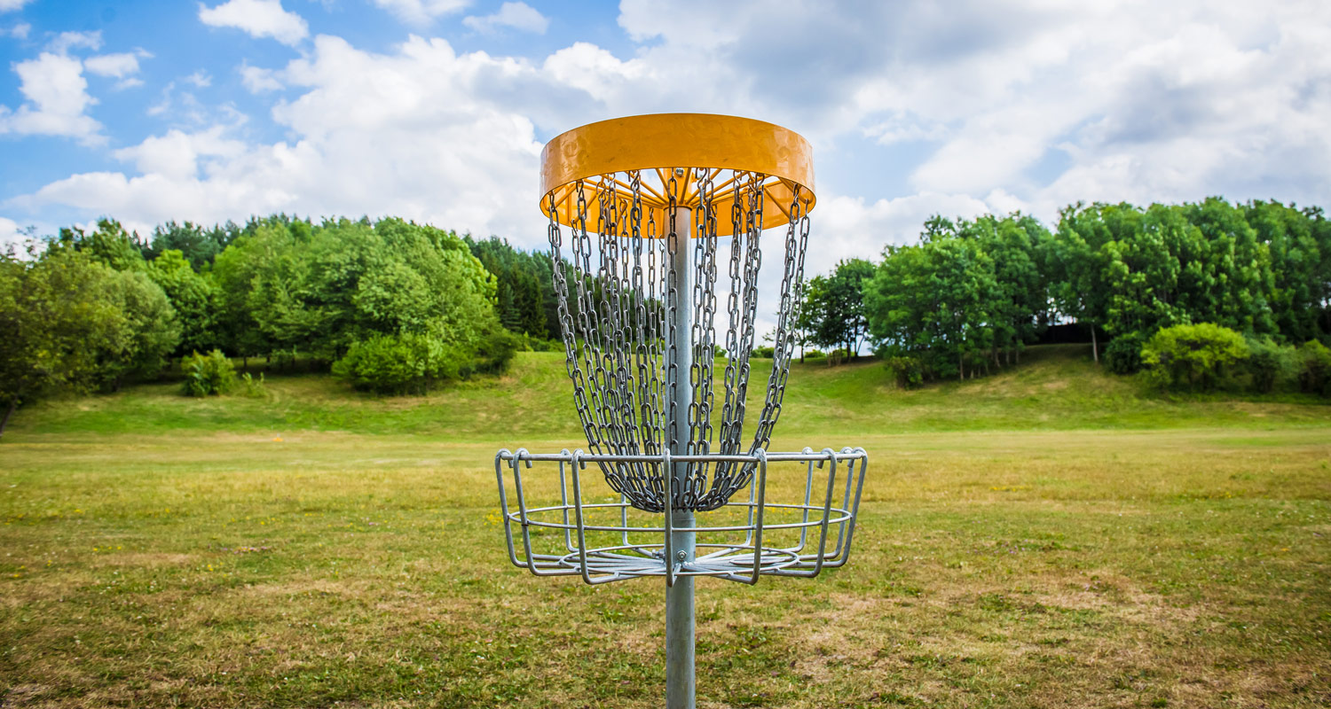 Here's How Much The Best Disc Golfers In The World Make ...