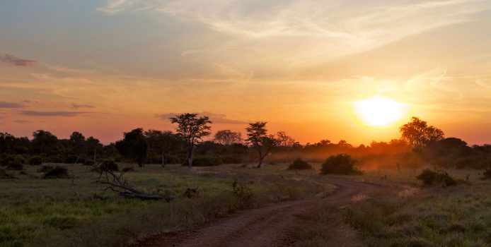 Leathermans Return to Zambia, Disc Golf Grows in Africa