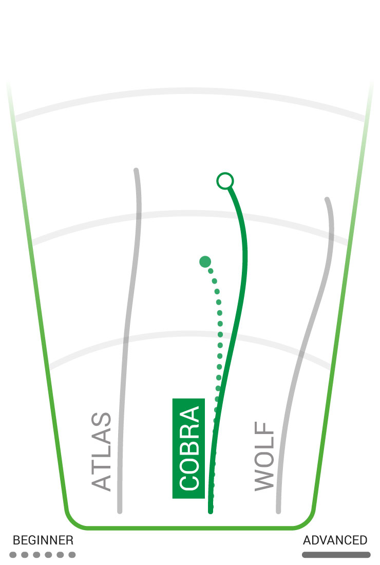 Cobra Flight Path