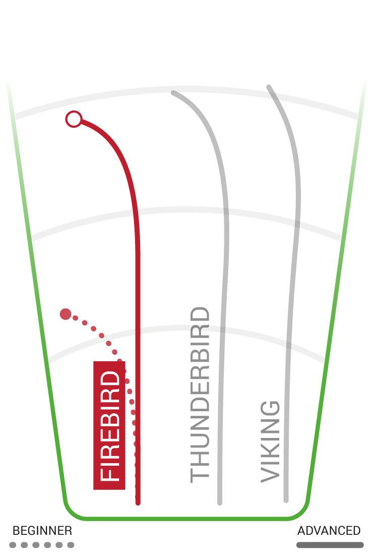 Firebird Flight Path